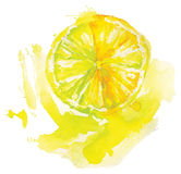 Watercolor lemon Royalty Free Stock Photo