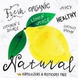 Watercolor lemon Stock Image