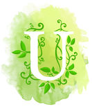 Watercolor letter calligraphy on watercolor background. Natural elements leaves curls design an element for web poster typographic Stock Photography