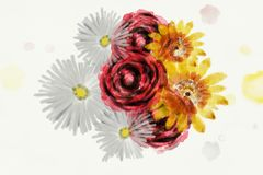 Watercolor like flowers illustration royalty free stock images