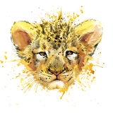 Watercolor Lion cub illustration. Lion cub T-shirt graphics, watercolor Lion cub illustration with splash watercolor textured background. illustration watercolor royalty free illustration