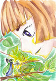 Watercolor little boy and cricket with lantern fairy Royalty Free Stock Image