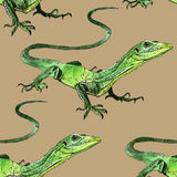 Watercolor lizard, hand painted drawing of outline Royalty Free Stock Images