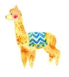 Watercolor Llama, Alpaca Isolated On White Background. Stock Image