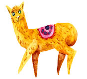 Watercolor llama, alpaca isolated on white background. Royalty Free Stock Images