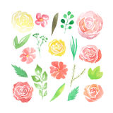 Watercolor loose form flowers, leaves, branches. Set of hand painted watercolor loose form flowers, leaves and branches in green, red and yellow colors. Nature stock illustration