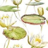 Watercolor lotus pattern Stock Photo