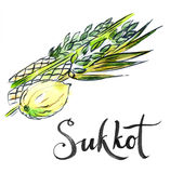 Watercolor lulav and etrog, Sukkot plants Royalty Free Stock Image