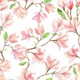 Watercolor magnolia branches vector illustration