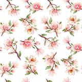 Watercolor magnolia floral vector pattern Royalty Free Stock Image
