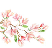 Watercolor magnolia flower card. Stock Photo