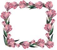 Watercolor Magnolia flowers frame vector illustration