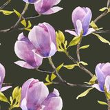 Watercolor magnolia seamless pattern Stock Photography