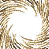 Watercolor malt design Stock Image