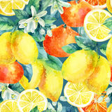 Watercolor mandarine orange and lemon fruit branch with leaves seamless pattern. Watercolor mandarine orange and lemon fruit with leaves and blossom seamless vector illustration