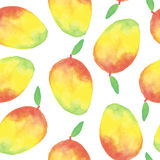 Watercolor mango seamless pattern. On white background Stock Photos