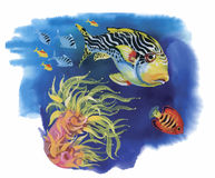 Watercolor Marine life background with Tropical fish.  Stock Photography