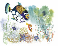 Watercolor Marine life background with Tropical fish.  Royalty Free Stock Images