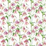 Watercolor meadow bellflowers seamless pattern Royalty Free Stock Image