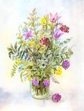 Watercolor meadow flowers in a glass jar. Summer vintage illustration. Suitable for poster royalty free stock image