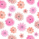 Watercolor meadow flowers seamless pattern Stock Photography