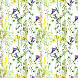 Watercolor meadow flowers seamless pattern. Watercolor wild bellflowers, daisy and herbs background. Hand painted illustration Royalty Free Stock Image