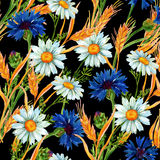 Watercolor meadow seamless pattern Royalty Free Stock Images