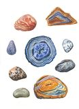 Watercolor minerals set. Coloful Agates Royalty Free Stock Photo