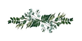 Watercolor modern decorative element. Eucalyptus round Green leaf Wreath, greenery branches, garland, border, frame, elegant