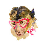 Watercolor monkey in red heart shaped glasses. Fashionable animal with a bow. Hand drawn chinese zodiac symbol. Unusual illustration for fashion posters, print stock illustration