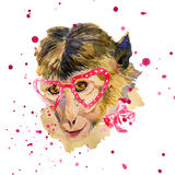 Watercolor monkey in red heart shaped glasses stock images