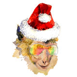 Watercolor monkey in sun glasses and Santa Claus. Watercolor monkey in cool sun glasses and Santa Claus hat. Hand drawn chinese zodiac symbol. Cute monkey on the vector illustration