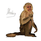 Watercolor monkey on white background Royalty Free Stock Photography