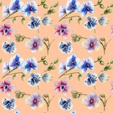 Watercolor multicolored orchids of different varieties seamless pattern. Hand painted on a peach background Stock Photography