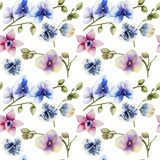 Watercolor multicolored orchids of different varieties seamless pattern. Hand painted on a white background Stock Photo