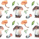 Watercolor mushrooms seamless pattern . Suitable for printing on fabric, dishes, posters, paintings. royalty free illustration