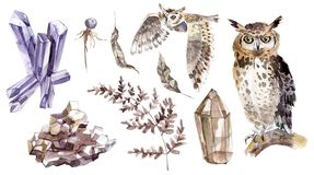 Watercolor mystical collection. Owls, crystal and plants. Brown and violet stock illustration