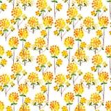 Watercolor natural seamless pattern Stock Image