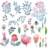 Watercolor nature clip art. Royalty Free Stock Photo