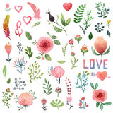 Watercolor nature clip art. Royalty Free Stock Image