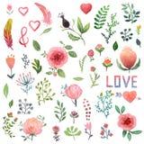 Watercolor nature clip art. Royalty Free Stock Image