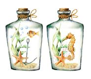 Watercolor nautical card with coral animals, plants and fish into the bottle. Hand painted underwater branches, starfish
