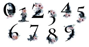 Watercolor numbers with splashes backgrounds flowers and black panthers. Romantic set for wedding invitations and card. S stock illustration