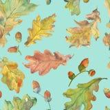 Watercolor Oak and acorns seamless pattern on blue stock illustration