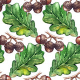 Watercolor oak green leaf acorn seed seamless pattern background texture Stock Images