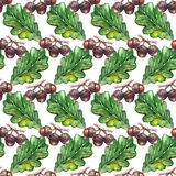 Watercolor oak green leaf acorn seed seamless pattern background texture Royalty Free Stock Image