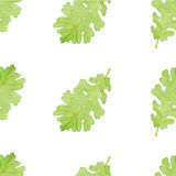 Watercolor oak leaf seamless pattern. Watercolor seamless pattern oak leaf vector Royalty Free Stock Images