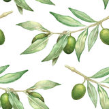 Watercolor olive branch seamless pattern. Hand-drawn background stock illustration