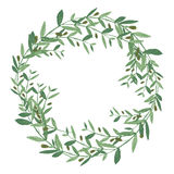 Watercolor olive wreath.  illustration on white backgrou Royalty Free Stock Photos