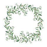 Watercolor olive wreath. Royalty Free Stock Image